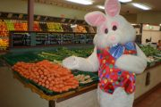 Easter Bunny picking up carrots from the green grocer