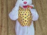 full-head-easter-bunny-a